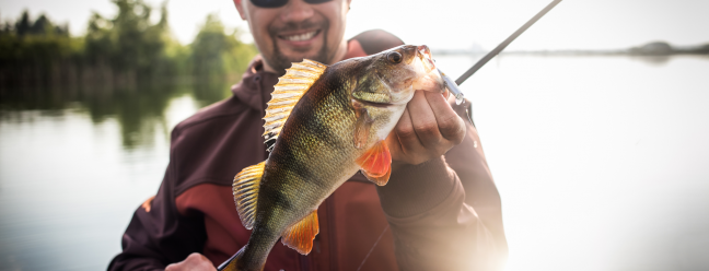 7 коробок с подпиской на рыбалку для заядлого рыбака — Обзор Geek