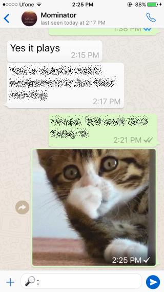 Как отправлять GIF и конвертировать короткие видео в GIF в Whatsapp
